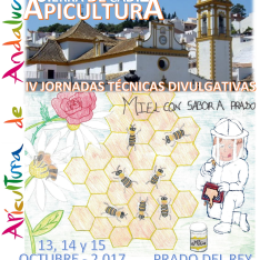 CARTEL IV JORNADAS 2017 NUEVO ULTIMO